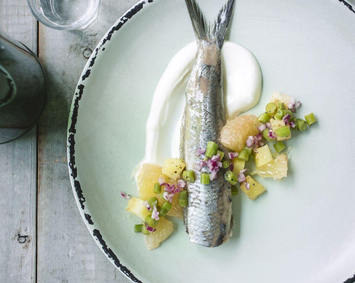 maatjes-met-tartaar-van-boontjes-pompelmoes-en-yoghurt