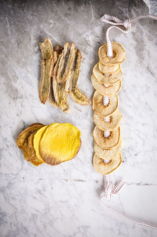 snoepjes-van-gedroogd-fruit-door-sofie-dumont