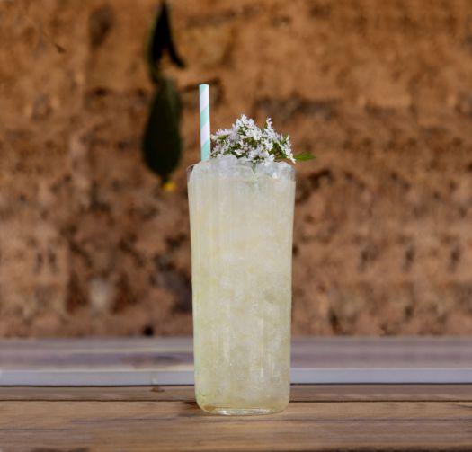 Gin + peterselie dor Sofie Dumont