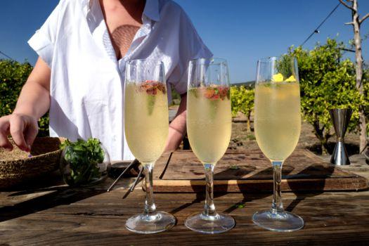 Sofie Dumont Ibiza 2019: Royal Koriander Martini fizz