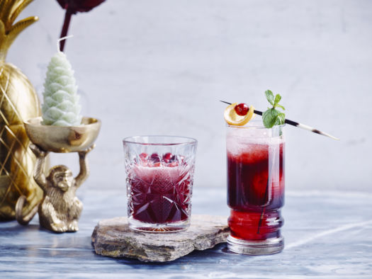Cranberry mule of cranberry mocktail door Sofie Dumont