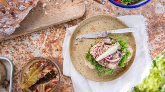 Oldschool terrine van varken, kip en pistachenoten